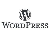 レンタルサーバーはWordPressでサイト構築 スキルはプログラミング学習でアップ