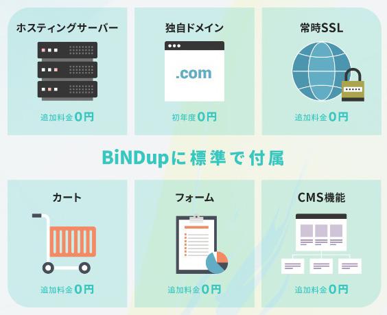 レンタルサーバー ホームページ作成サービスのBiNDup(バインド・アップ)はサーバー・制作・ドメイン込