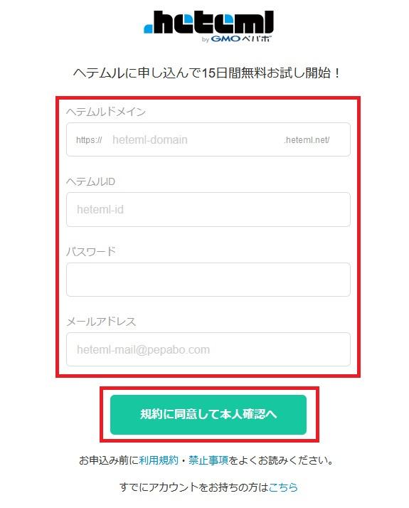 レンタルサーバー ヘテムル申し込み登録画面